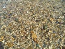 在河水下的石头 免版税库存图片