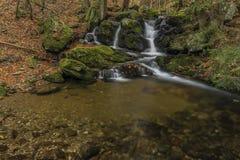 在河Cista的瀑布Krkonose山的 库存图片