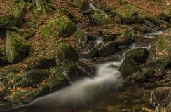 在河Cista的秋天天Krkonose山的 免版税库存图片
