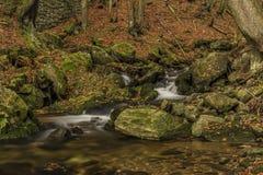 在河Cista的秋天天Krkonose山的 库存照片