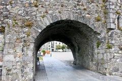 在河Corrib,戈尔韦市,戈尔韦郡附近的西班牙曲拱 免版税图库摄影
