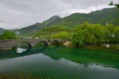 在河Crnojevic的老石桥梁 库存照片