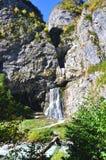 在河Gega的瀑布 图库摄影