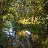 在河Itchen -为用假蝇钓鱼使有名望的一条著名白垩床小河-在Ovington之间和Itchen阿拔斯的秋天日出 免版税库存照片