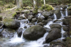 在河Murudzhu的瀑布在白种人森林中在秋天 免版税库存图片