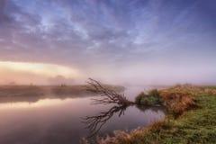 在河Neman的9月 库存照片
