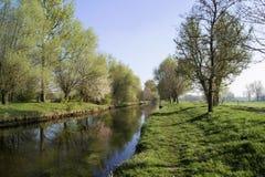 在河Niers的春天心情在格雷夫拉特oedt附近 库存照片