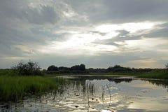 在河Pripyat的晚上日落 云彩 7月 夏天 白俄罗斯横向 库存图片
