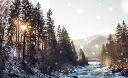在河Prut的瀑布Probiy 其中一个滑雪胜地亚列姆切的旅游胜地,乌克兰 库存照片