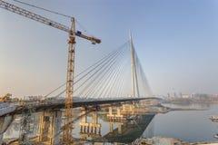 在河Sava,贝尔格莱德,塞尔维亚的Ada桥梁 库存照片