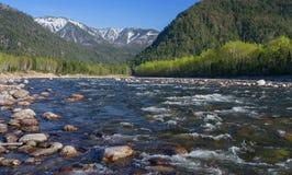 在河Snezhnaya的春天 库存图片