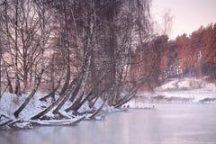 在河Svisloch的冬天 免版税库存照片