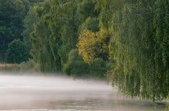 在河Svisloch的有雾的早晨 图库摄影