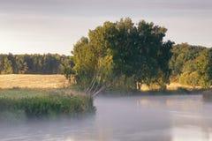 在河Svisloch的8月早晨 免版税库存照片