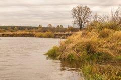 在河Teterev,乌克兰的秋天风景 库存图片