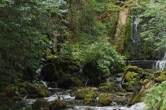 在河Vrelo的瀑布在西部塞尔维亚 库存照片