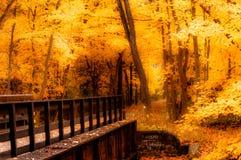 在油漆小河桥梁的秋天 库存图片