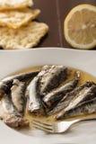 在油的用卤汁泡的沙丁鱼在有金属叉子和柠檬和玉米面面包的一块白色板材服务 免版税库存图片