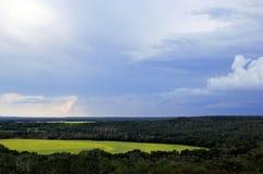 在油菜南马尼托巴的领域的云彩 库存图片
