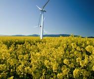 在油菜籽的风车调遣反对明亮的蓝天 免版税图库摄影