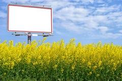 在油菜籽领域的空白的白色广告牌 库存照片