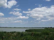 在沼泽上的清楚的天空 库存照片