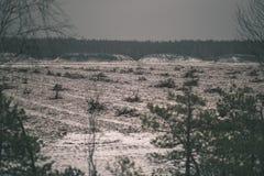 在沼泽为收获培养的区域beeing的草皮领域-葡萄酒减速火箭的影片神色 库存图片