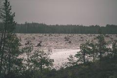 在沼泽为收获培养的区域beeing的草皮领域-葡萄酒减速火箭的影片神色 免版税图库摄影