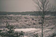 在沼泽为收获培养的区域beeing的草皮领域-葡萄酒减速火箭的影片神色 免版税库存图片