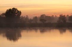 在沼泽地的日出 图库摄影