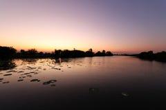 在沼泽地的日出 免版税库存图片