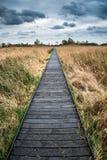 在沼泽地的风雨如磐的天空风景在有木板走道的乡下 免版税库存图片