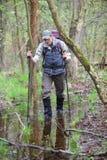 在沼泽森林里走与杆的远足者 免版税库存图片