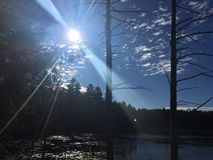 在沼泽池塘的阳光 库存照片