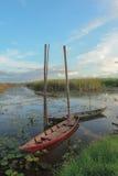 在沼泽的两条小船 免版税库存图片