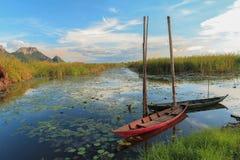 在沼泽的两条小船 图库摄影
