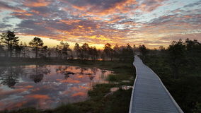 在沼泽的五颜六色的日出 免版税库存图片