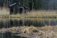 在沼泽的偏僻的渔棚子 免版税库存图片