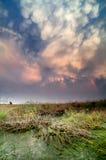在沼泽的双突透镜的云彩在日落 库存照片