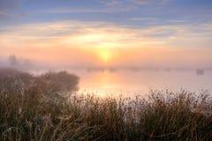 在沼泽的巨大有薄雾的日落 免版税库存照片
