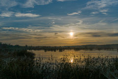 在沼泽的巨大有薄雾的日落 免版税库存图片