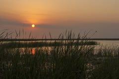 在沼泽的平静的日落 免版税库存照片