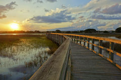 在沼泽的暮色天空 免版税库存图片