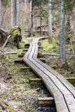 在沼泽的木人行桥 图库摄影
