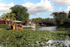 在沼泽的汽船 图库摄影