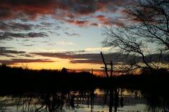 在沼泽的美好的日落 库存照片