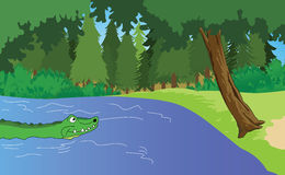 在沼泽的鳄鱼 向量例证