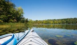 在沼泽边缘的两艘皮船 免版税库存照片