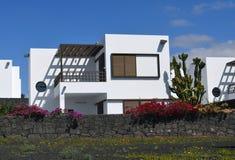 在沿海岸区附近的物产肋前缘的特吉塞兰萨罗特岛 免版税库存图片