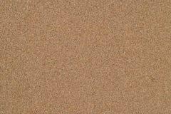 在沿海的湿沙子 图库摄影